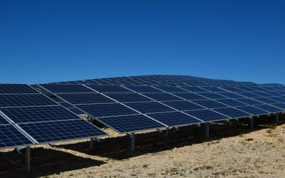 Prana Power acquires a 108 MWp solar park developed by Dhamma Energy and Sunpower in Mexico