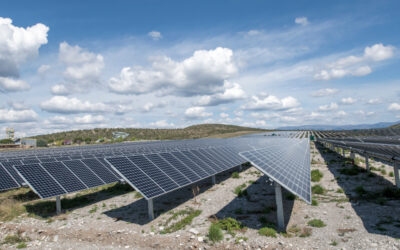 Dhamma Energy acquires remaining 50% stake in 12 MWp solar park in France
